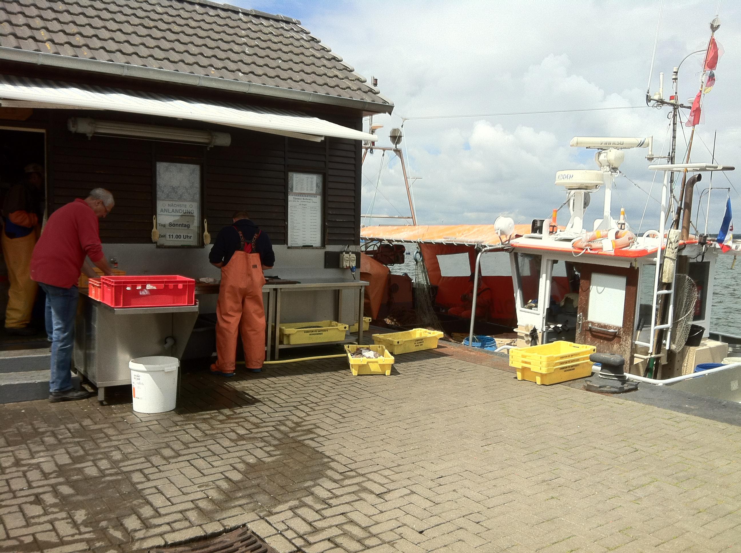 Nordrügen - Breege - Glowe - Fangfrischer Fisch...
