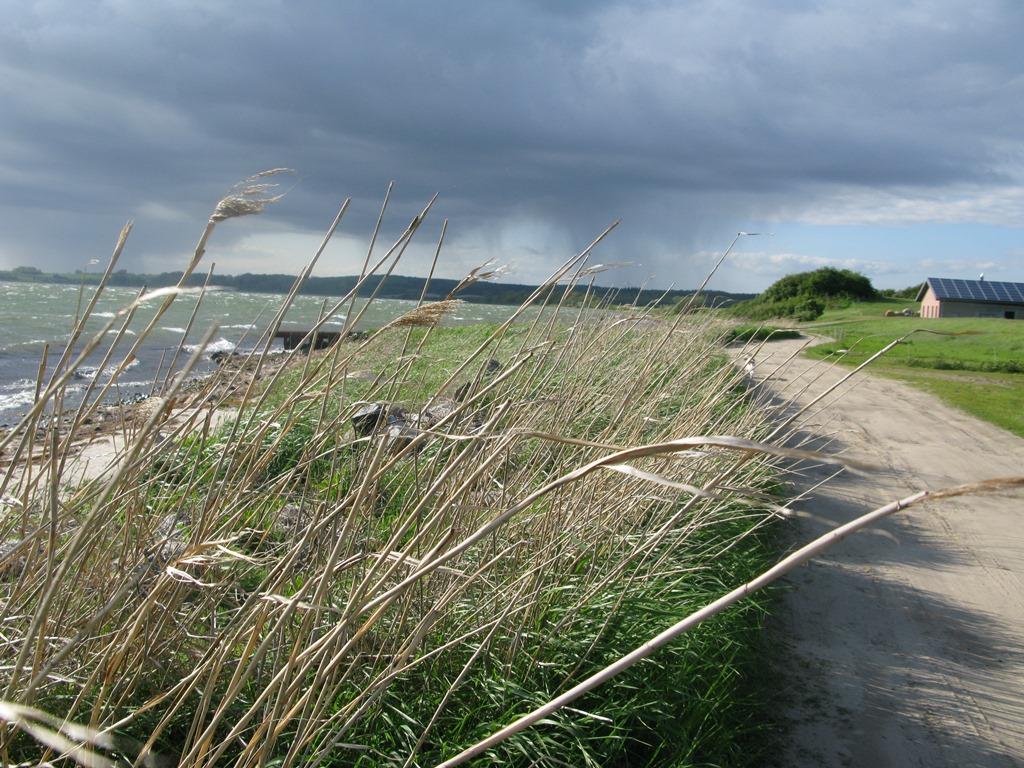 Insel Rügen - Urlaub im Ferienhaus, Ferienwohnung, Urlaub in Strandvillen in Binz und Sellin - Wunderschöne Wege zum Wandern
