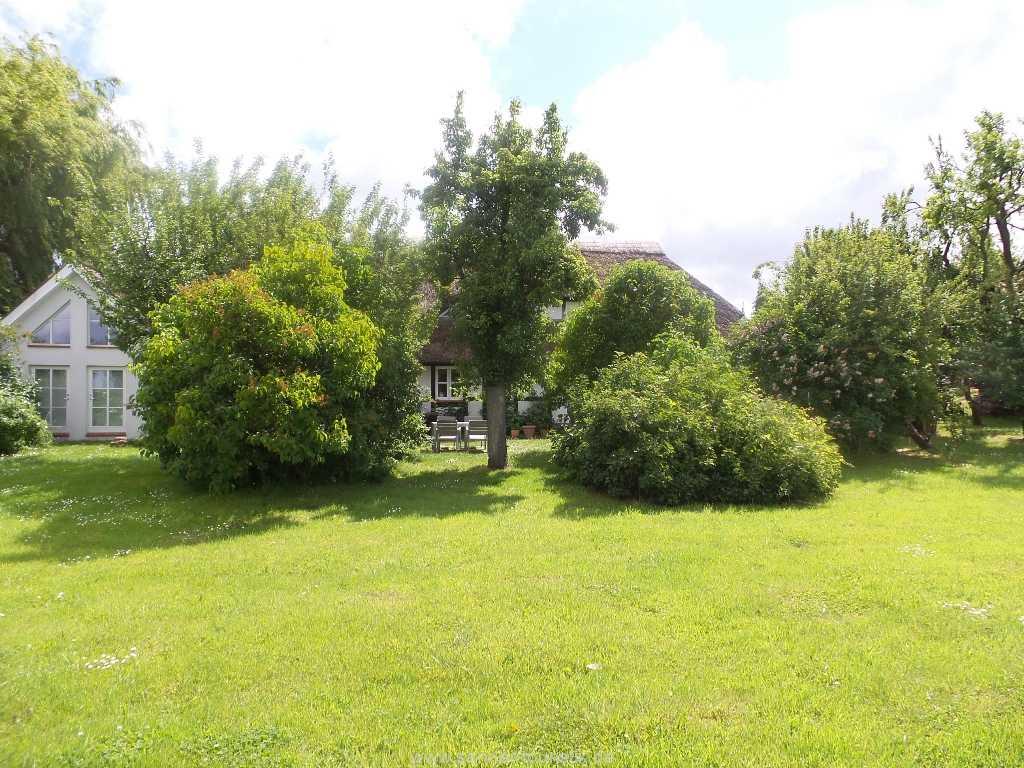 großes gepflegtes Gartengrundstück um das Haus - Mönchgut