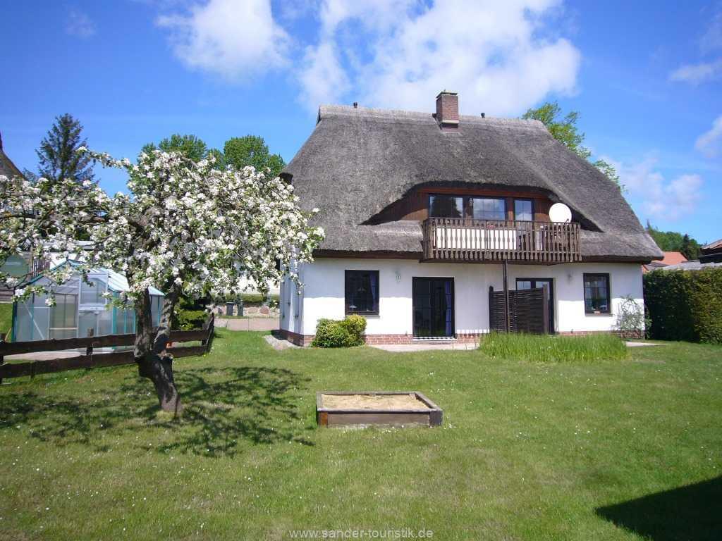 Blick aus dem Garten zum Ferienhaus Möwe
